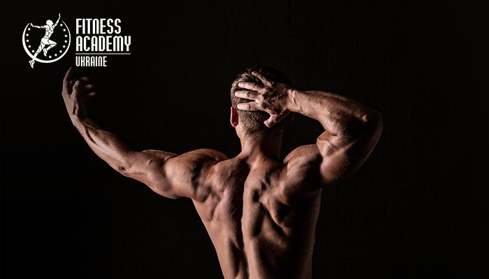 «Академия Фитнеса — Украина», тренировки для мышц